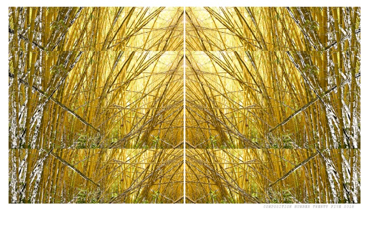 CompositionBamboowork
